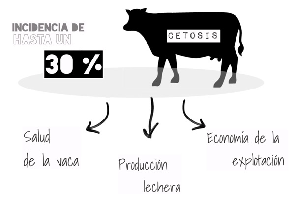 Incidencia Keto Fix