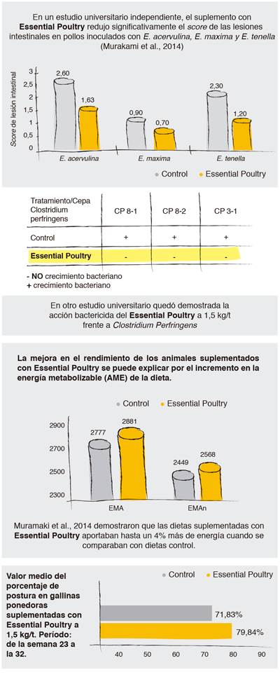 essential-poultry-caja-2