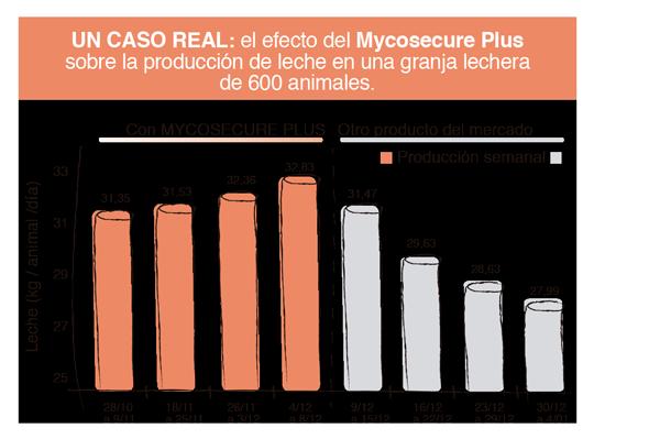 mycosecure-casoreal-caja