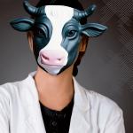 Star Cows
