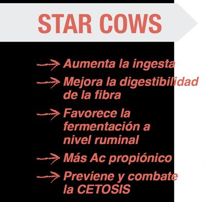 Producto starcows beneficios