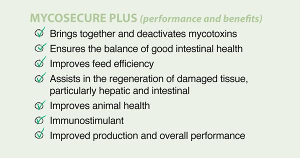 benefits mycosecure plus nutcat