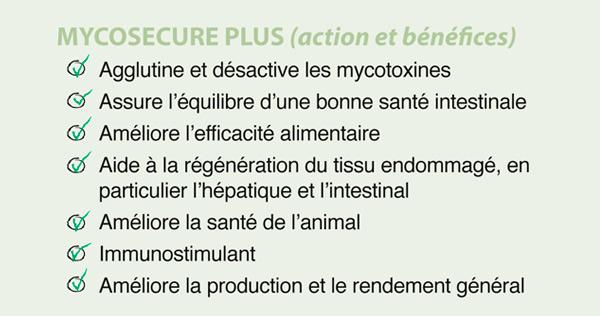 effets positives mycotoxines mycosecure poultry